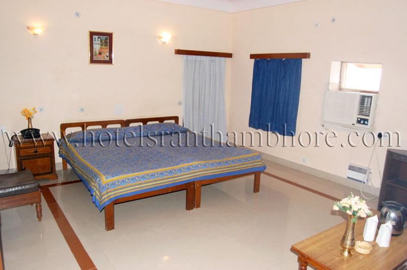Rtdc Hotel Castle Jhoomar Baori Ranthambhore India